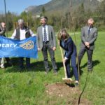 Il Rotary dona 100 alberi ai Comuni di Maniago e Spilimbergo